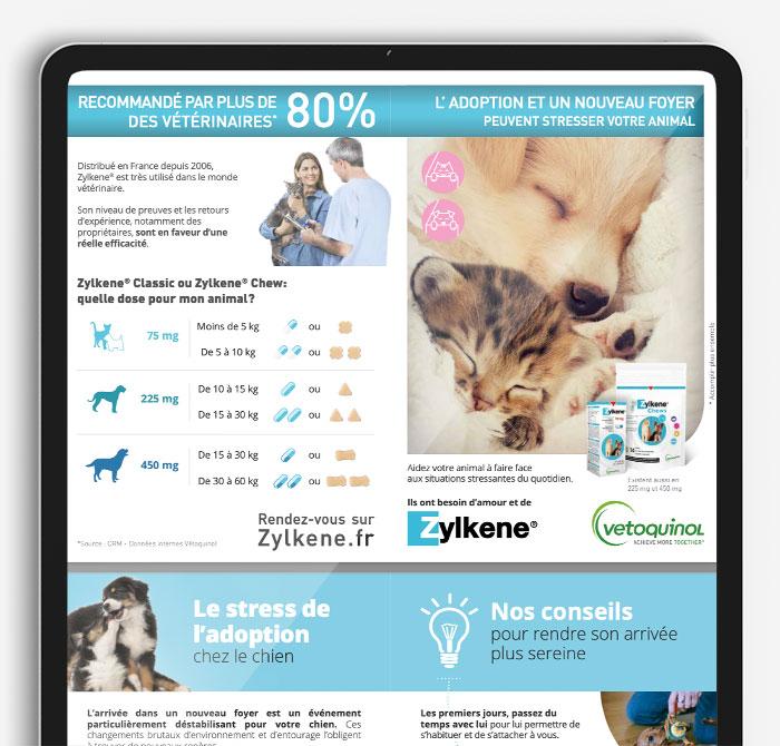 adoption-laptop